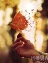 一个男人念念不忘的爱情模样 就是小说中何以琛的样子