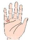 什么手相适合学商创业 什么手相叫手握元宝