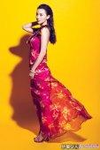 小宋佳:长裙飘飘写真